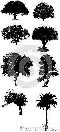 树导航拼贴画,黑白