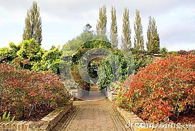 庭院路 库存照片 - 图片