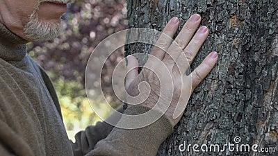 Άνδρας συνταξιούχος αγκαλιάζει το δέντρο στον κήπο, αγαπάει τη φύση, σώζει τον πλανήτη, οικολογία φιλμ μικρού μήκους