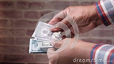 Άνδρας υπάλληλος που μετρά το μισθό σε μετρητά σε δολάρια απόθεμα βίντεο
