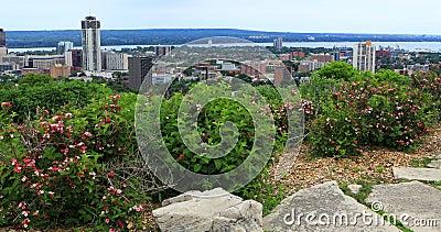 Άποψη του Χάμιλτον, Καναδάς, ορίζοντας με τα λουλούδια στο πρώτο πλάνο 4K απόθεμα βίντεο