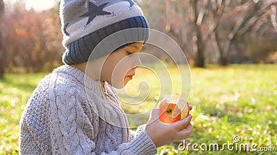 Ένα παιδί στο φθινοπωρινό πάρκο σε πικ-νικ Τρώει ένα ζουμερό κόκκινο Apple Κλείσιμο προσώπου απόθεμα βίντεο