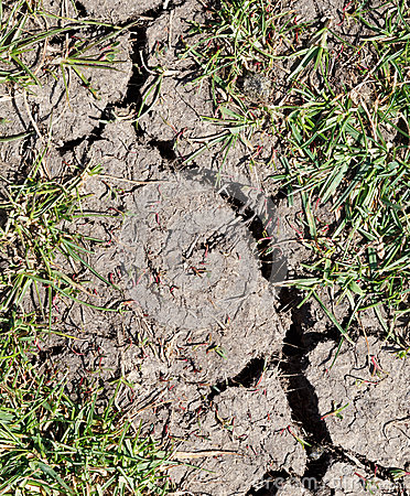 Έδαφος ξηρασίας
