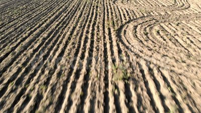 Αγροτική εναέρια άποψη με τον οργωμένοι τομέα και furrows που σύρουν την ξηρά γη απόθεμα βίντεο