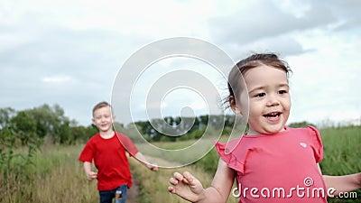 Αγόρι, κορίτσι που παίζει το 'catch-up' αδελφή που τρέχει χέρι εκτέλεση στο πεδίο απόθεμα βίντεο