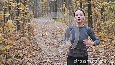 Αθλήτρια με μαύρο και γκρι αθλητικό όρκο που τρέχει στο πάρκο Γυναίκα με κίνητρα που τρέχει στο δάσος απόθεμα βίντεο