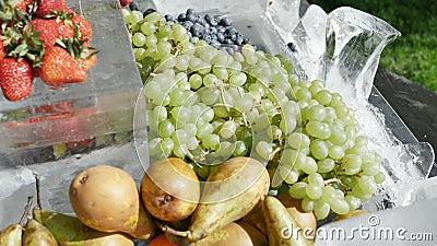 Ανάμεικτα φρούτα τομέα εστιάσεως φρούτων στο αχλάδι κερασιών βακκινίων σταφυλιών φραουλών ροδάκινων βερίκοκων πάγου r απόθεμα βίντεο