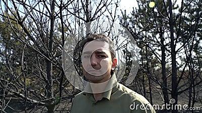 Απελπισμένο άτομο που στέκεται στα μμένα δέντρα μετά από τη μεγάλη άγρια πυρκαγιά, θλίψη, καταστροφή οικολογίας, άνθρωποι προβλήμ απόθεμα βίντεο