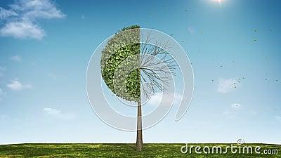 Αυξηθείτε το διάγραμμα πιτών μορφής δέντρων υποδειγμένος 50 percents πράσινο εικονίδιο διανυσματική απεικόνιση