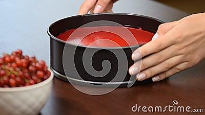 Αφαιρέστε από cheesecake φορμών με τις κόκκινες σταφίδες φιλμ μικρού μήκους