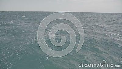 Αφύπνιση και κύματα στη θάλασσα S-Log3 φιλμ μικρού μήκους
