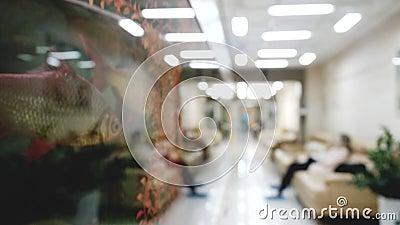 Βίντεο θαμπάδων του διαδρόμου στην κλινική με τους περιμένοντας ασθενείς και τους περπατώντας γιατρούς απόθεμα βίντεο