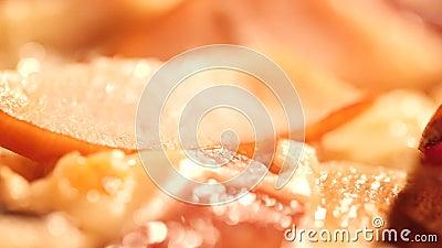 Βίντεο μακροεντολής με ζουμερά ιταλικά συστατικά πίτσας απόθεμα βίντεο