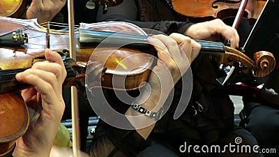 Βιολί και χέρια απόθεμα βίντεο