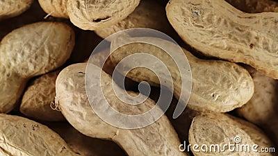 Βιο πρόχειρο φαγητό φυστικιών φιλμ μικρού μήκους
