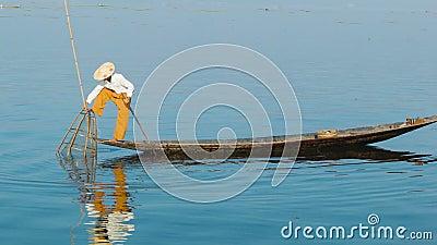 Βιρμανός ψάρια συλλήψεων ψαράδων χρησιμοποιώντας μια παγίδα inle λίμνη Myanmar απόθεμα βίντεο