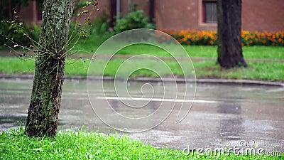 Βροχερές μέρες στην πόλη Κινούμενα αυτοκίνητα σε υγρό δρόμο φιλμ μικρού μήκους