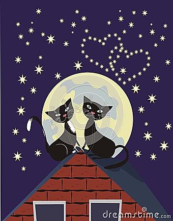 γάτες δύο