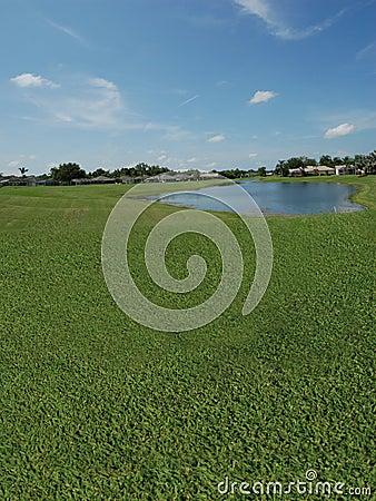 Γήπεδο του γκολφ με τις όψεις λιμνών