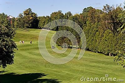 Γκολφ whitby 1