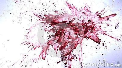 Γυαλί κόκκινου Wibe που πέφτει, που σπάζει και που καταβρέχει στο άσπρο κλίμα, απόθεμα βίντεο