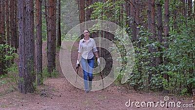 Γυναίκα κουβαλάει κομμένα δέντρα σε ένα στρατόπεδο δασκάλων για καυσόξυλα, μπροστινή όψη απόθεμα βίντεο