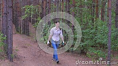 Γυναίκα κουβαλάει κομμένα δέντρα σε ένα στρατόπεδο δασκάλων για καυσόξυλα απόθεμα βίντεο