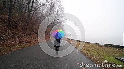 Γυναίκα που στέκεται σε μια ομίχλη καλυμμένη με μια πολύχρωμη ομπρέλα απόθεμα βίντεο