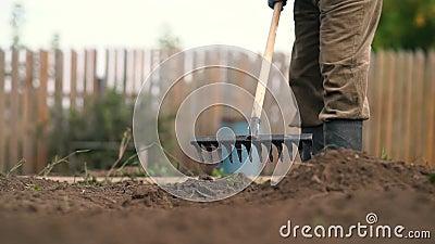 Διαδίδοντας και ισοπεδώνοντας έδαφος ξύλινων λαβών τσουγκρανών μετάλλων fermer χρησιμοποίηση raker ζιζανίων για τη βαθμολόγηση το απόθεμα βίντεο