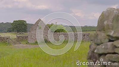 Δομικό τοίχωμα σε πράσινο πεδίο απόθεμα βίντεο