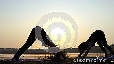 Δύο Girls do Dog-Face-Down Pose στα χαλιά σε μια τράπεζα λιμνών στο ηλιοβασίλεμα στην slo-Mo φιλμ μικρού μήκους
