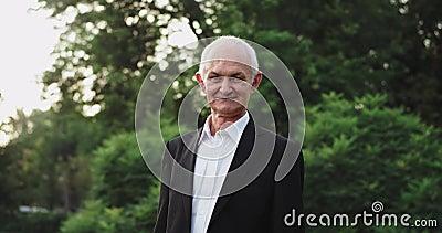 Ελκυστικός γέρος με μαύρο κοστούμι κοιτάζοντας κατευθείαν στην κάμερα στη μέση του πάρκου στη φύση απόθεμα βίντεο