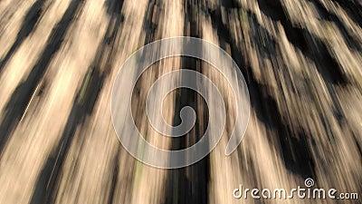 Εναέρια άποψη τρελλού πετώντας προς τα πίσω τον επάνω οργωμένοι τομέα και furrows που σύρει την ξηρά γη φιλμ μικρού μήκους