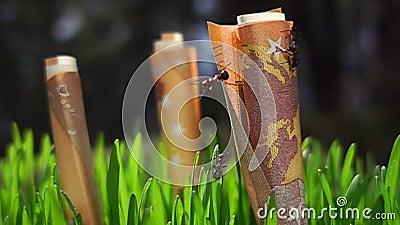 Ευρο- ανάπτυξη χρημάτων, εργασία μυρμηγκιών σε σε αργή κίνηση φιλμ μικρού μήκους