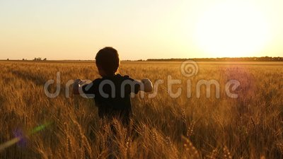 Ευτυχές παιδί που τρέχει σε έναν τομέα σίτου στο ηλιοβασίλεμα Ένα μικρό αγόρι που παίζει σε έναν τομέα σίτου Εμπνεύστε τους ανθρώ απόθεμα βίντεο