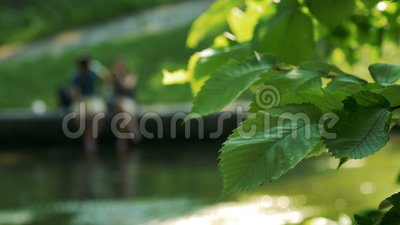 Ζεύγος στο πάρκο στο ύφος θαμπάδων φιλμ μικρού μήκους