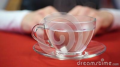 Η γυναίκα πρόκειται να πιει το τσάι Θηλυκό χύνοντας ζεστό νερό στο φλυτζάνι Χρόνος σπασιμάτων απόθεμα βίντεο