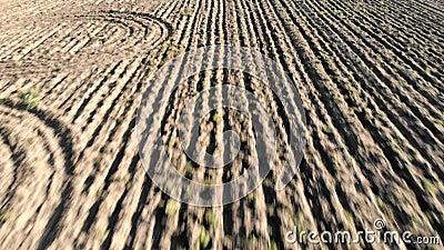 Η κεραία που πετά προς τα πίσω την άποψη στο καλλιεργήσιμο έδαφος όργωσε τον τομέα και furrows που σύρουν την ξηρά γη απόθεμα βίντεο