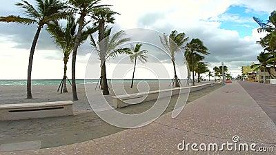 Θαλάσσιος περίπατος παραλιών Hollywood σε αργή κίνηση απόθεμα βίντεο