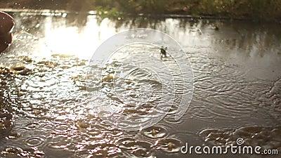 Θερινή βροχή Πόδια που οργανώνονται γυμνά μέσω της λακκούβας βροχή θερμή Ημέρα παιδιών ` s raindrops απόθεμα βίντεο