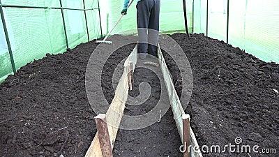 Ισοπεδώνοντας εδαφολογικό κρεβάτι ατόμων της Farmer με raker το εργαλείο στο θερμοκήπιο 4K φιλμ μικρού μήκους