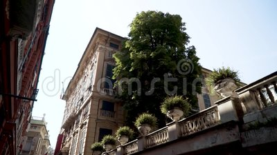 Κάτω όψη του δρόμου με τα παλιά ευρωπαϊκά κτίρια Ενέργεια Συνοικία εταξύ ριαλαιών ευρωριαϊκών οικιών και ριράσινη βλάστηση απόθεμα βίντεο