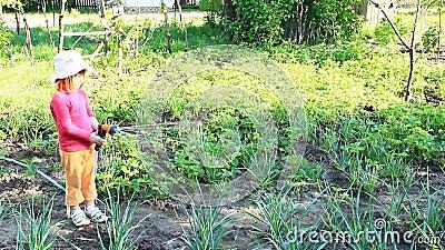 Κήπος και κρεβάτι ποτίσματος μικρών κοριτσιών Άρδευση οπωρώνων απόθεμα βίντεο