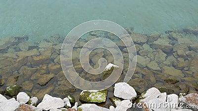 Καθαρίστε το νερό στην ακτή πετρών απόθεμα βίντεο
