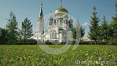 Καθεδρικός ναός Uspensky στο Ομσκ στο υπόβαθρο του πράσινου χορτοτάπητα με τις κίτρινες πικραλίδες απόθεμα βίντεο