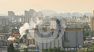 Καπνός από τους σωλήνες απόθεμα βίντεο