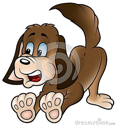 καφετί σκυλί