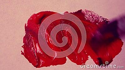 Κηλίδα βουρτσών χρωμάτων της κόκκινης άσπρης επιφάνειας χρωμάτων απόθεμα βίντεο