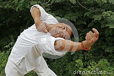 κινεζικό fu kung