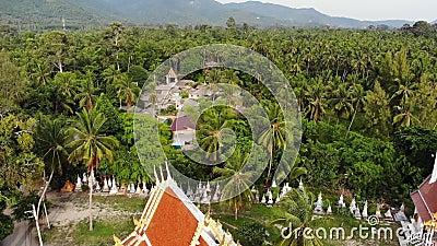 Κλασικός βουδιστικός ναός μεταξύ δάσους Από πάνω από το DRONE θέα Βουδιστικό μοναστήρι ανάμεσα σε πράσινα δέντρα κοντά στο λόφο απόθεμα βίντεο